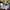 Online RN-BSN